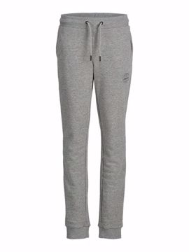 JJIGORDON JJSHARK SWEAT PANT